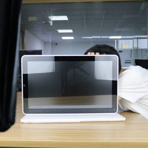 Flat Panel LCD Monitor